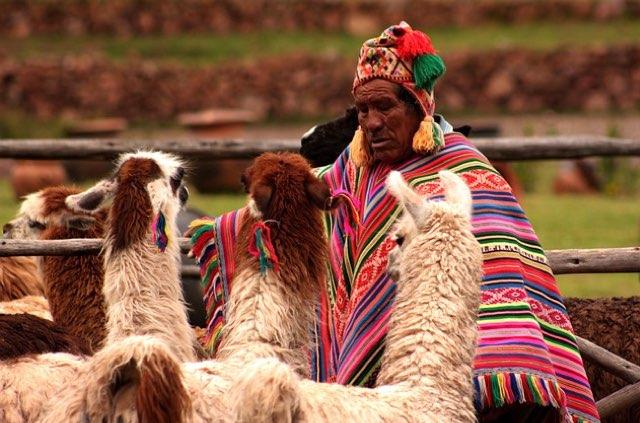 AAI Choice Humanitarian Peru